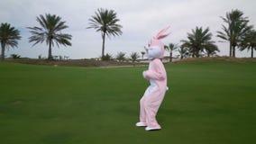 获得滑稽的疯狂的复活节兔子与实物大小一样的服装或的兔子在草或庭院的乐趣 愉快的野兔庆祝复活节 股票视频