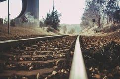 获得火车的春天 免版税图库摄影