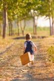 获得的小女孩乐趣在美好的秋天天 图库摄影