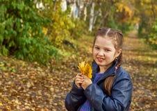 获得的小女孩美好的秋天的乐趣 免版税库存图片