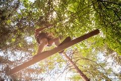 获得的少年在高绳索的乐趣在一个森林里追猎,冒险,停放,爬树在夏天 库存照片