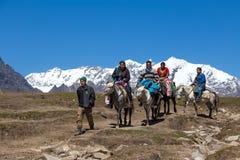 获得的游人在Rohtang通行证的乐趣,喜马偕尔邦,印度 库存照片