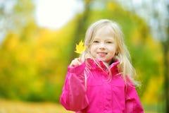 获得逗人喜爱的小女孩乐趣在美好的秋天天 使用在秋天公园的愉快的孩子 会集黄色秋叶的孩子 图库摄影
