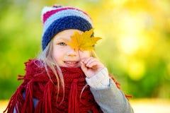 获得逗人喜爱的小女孩乐趣在美好的秋天天 使用在秋天公园的愉快的孩子 会集黄色秋叶的孩子 免版税库存图片