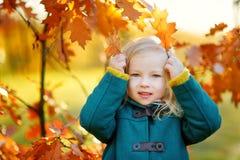 获得逗人喜爱的小女孩乐趣在美好的秋天天 免版税库存照片