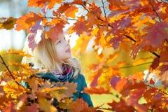 获得逗人喜爱的小女孩乐趣在美好的秋天天 免版税图库摄影