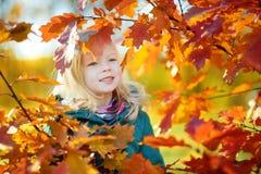 获得逗人喜爱的小女孩乐趣在美好的秋天天 图库摄影