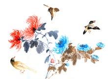 菊花传统看法  免版税图库摄影