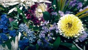 菊花和五颜六色的野花 免版税库存图片