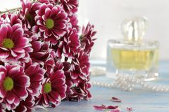 菊花和香水在背景中在一张蓝色木桌上 图库摄影
