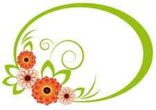 菊花框架长圆形 免版税库存照片