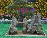 菊花结构树和人为小山 库存图片