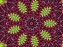 菊花自然样式 库存图片