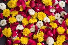 菊花花和红色瓣玫瑰 库存照片