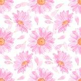 菊花 无缝花卉的模式 图库摄影