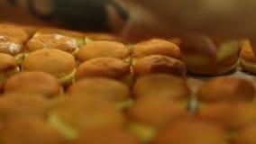 细菌学家 奶油色小圆面包的准备 股票视频