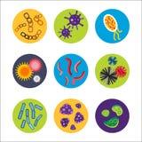细菌病毒微观被隔绝的微生物象人的微生物学有机体和医学传染生物病症 向量例证