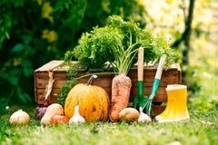 菜、园艺工具和wellies在庭院里 库存照片