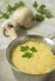 菜丝汤用蘑菇和荷兰芹 免版税库存照片