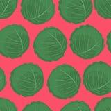 菜印刷品用在桃红色背景的圆白菜 图库摄影