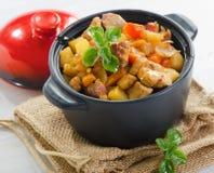 菜和肉炖煮的食物 免版税库存照片