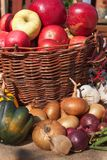 菜和苹果在篮子 在家庭菜园的秋天天 健康饮食的食物 晴朗的日 库存图片