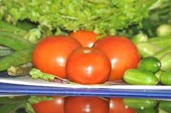 菜喜欢蕃茄,在盘子的夫人手指 免版税库存图片