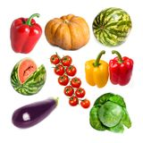 菜在一个白色背景南瓜,甜椒,圆白菜,西瓜,茄子,蕃茄分支设置了  免版税库存照片