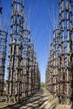 菜大教堂在Lodi,意大利,组成中橡树被种植了的108个木专栏在 免版税库存照片