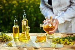 菜子油瓶在手中一名农艺师或生物学家背景强奸领域的 图库摄影
