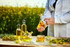 菜子油瓶在手中一名农艺师或生物学家背景强奸领域的 免版税库存照片