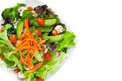 菜沙拉板材在白色的 免版税库存照片