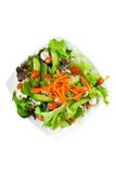 菜沙拉板材在白色的 免版税图库摄影