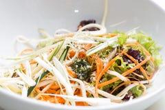 菜沙拉混合 免版税库存图片