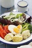 菜沙拉用在板材的鸡蛋 库存照片