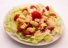 菜沙拉用干酪 库存照片