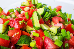 菜沙拉用新鲜的蕃茄黄瓜和葱 免版税库存图片