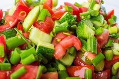 菜沙拉用新鲜的蕃茄黄瓜和葱 免版税库存照片