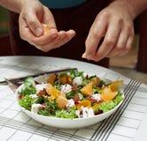 菜沙拉用果子和山羊乳干酪 库存图片