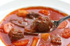 菜炖牛肉汤 库存照片