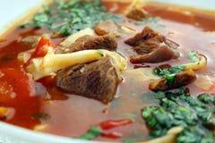 菜炖牛肉汤 免版税库存图片