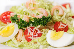 从菜特写镜头的美丽和开胃沙拉 库存照片