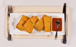 主菜用在长方形板材的调味汁 库存照片