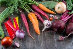 菜的分类从庭院的 红萝卜,甜菜,唐莴苣,夏南瓜,葱,大蒜,蕃茄 免版税图库摄影