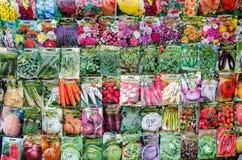 菜种子的各种各样的类型 免版税库存照片