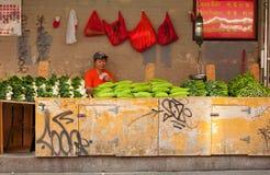 菜立场在唐人街, NYC 免版税库存图片