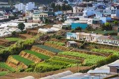 菜领域和Housein高地,大叻,越南 免版税库存照片
