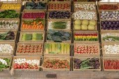 菜食物,商展2015年米兰大模型在Decumano的 库存图片