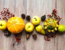 菜,果子,秋天莓果的时髦的构成 在木背景的顶视图 秋天舱内甲板位置 免版税库存照片