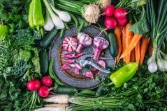 菜 农业新鲜市场产品蔬菜 五颜六色的菜背景 健康菜演播室照片 新鲜蔬菜的分类 免版税图库摄影
